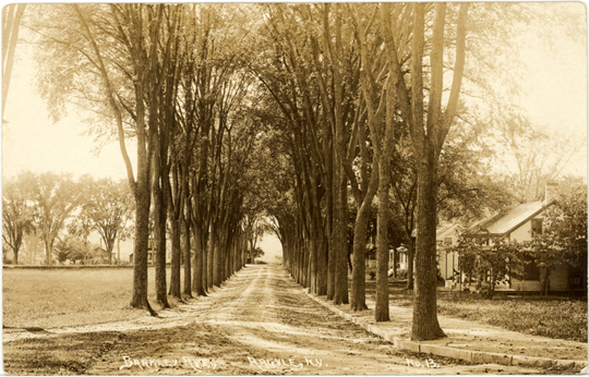 Barkley Avenue ~ Argyle, New York ~ 1912
