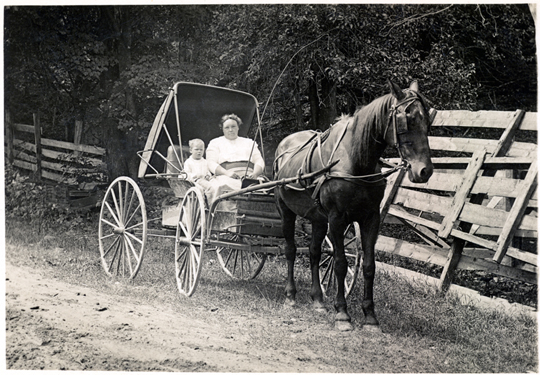 Transportation, Horse 1910s Postcard - Real Photo - Woman and Baby in Buggy  - TRHR0002 - Richard Clayton Photography - Cambridge Photo - Vintage Photographs