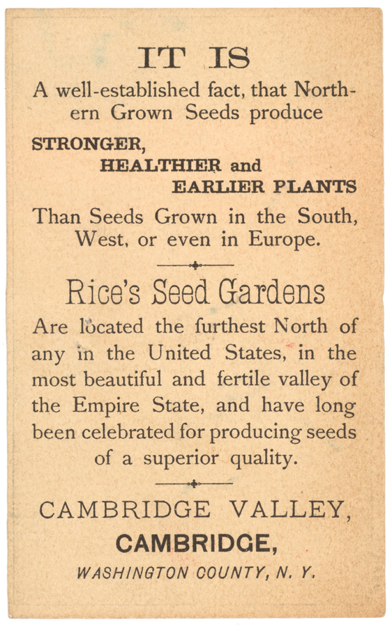 Rice's Seed Gardens ~ Cambridge Valley, NY
