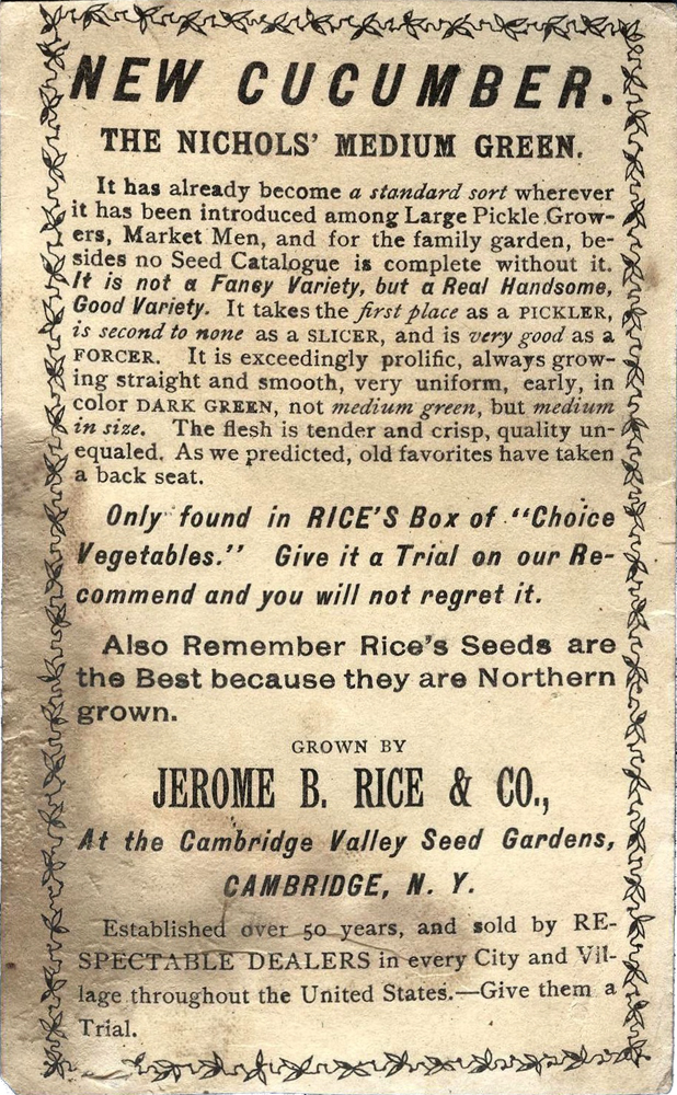 Rices Seed House ~ Cucumber Back ~ 1887