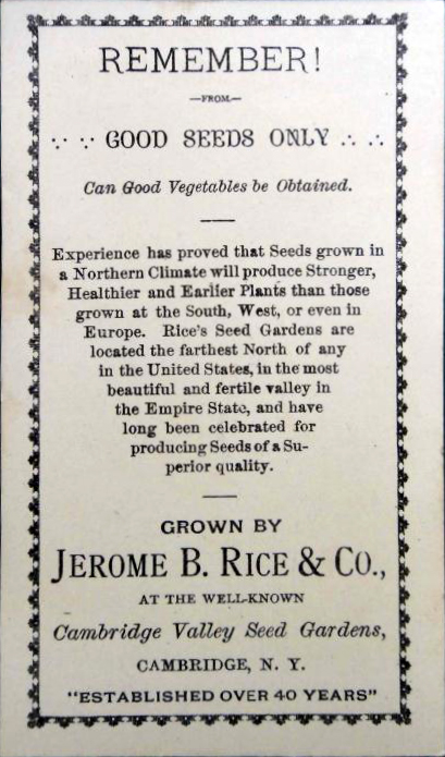 Rices Seed Company ~ Cotton Ball Head ~ Back